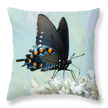 Butterfly Candy Throw Pillow by Betty LaRue