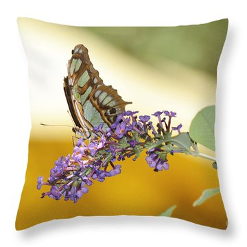 Butterfly Lavender Branch Throw Pillow by Andrea Hazel Ihlefeld