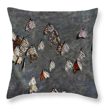 Throw Pillow featuring the photograph Butterfly Gathering by Tam Ryan