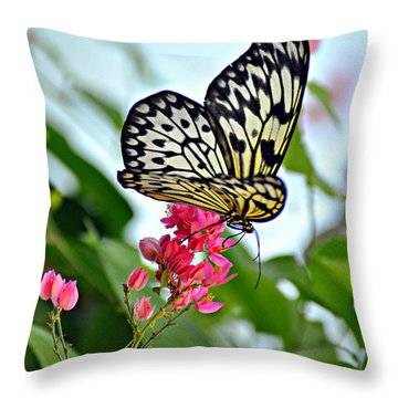 Butterfly Glow Throw Pillow by Marty Koch