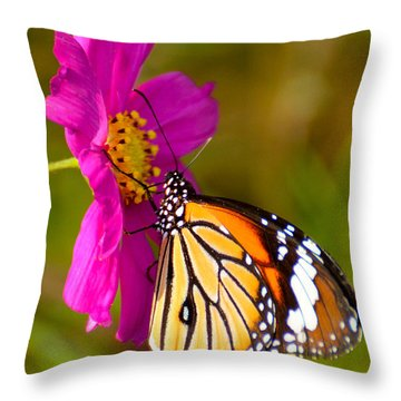 Butterfly II Throw Pillow by Fotosas Photography