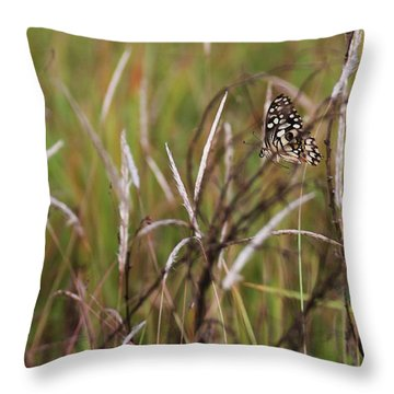Throw Pillow featuring the photograph Butterfly In Flight by Fotosas Photography