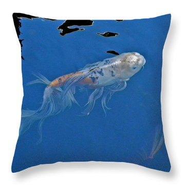 Butterfly Koi In Blue Sky Reflection Throw Pillow by Kirsten Giving