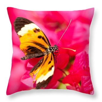 Throw Pillow featuring the photograph Butterfly by Les Palenik
