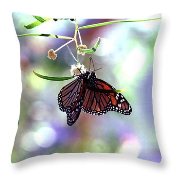 Throw Pillow featuring the photograph Butterfly Meet-up by Tam Ryan