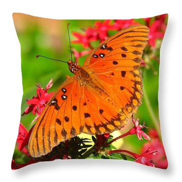 Butterfly On Pentas Throw Pillow by Carla Parris
