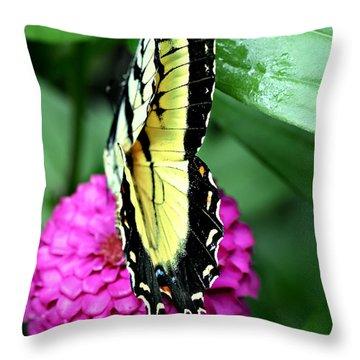 Butterfly On Pink Throw Pillow by Susan Leggett