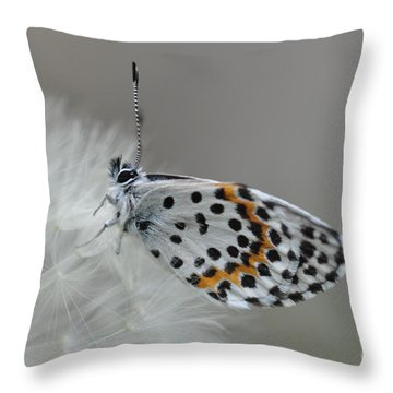 Butterfly Throw Pillow by Sylvie Leandre