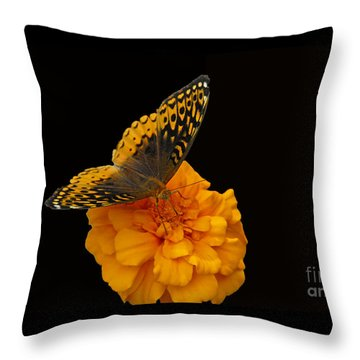 Butterfly Visitor Throw Pillow by Cindy Manero