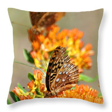 Butterfly Weed 2 Throw Pillow by Marty Koch