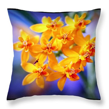 Butterfly Weed Throw Pillow by Judi Bagwell
