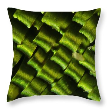 Butterfly Wing Scales Throw Pillow by Raul Gonzalez Perez