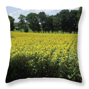 Buttonwood Farm Throw Pillow