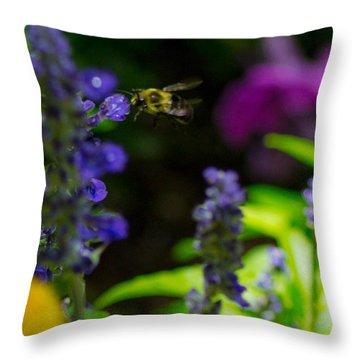 Buzzing Around Throw Pillow by Shannon Harrington