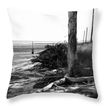 Bwhurricane Damage Throw Pillow by Judy Hall-Folde