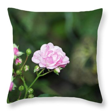 By Any Other Name Throw Pillow by Elaine Mikkelstrup