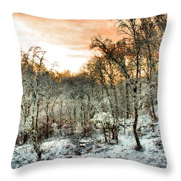 By Dawn's Early Light Throw Pillow by Kristin Elmquist