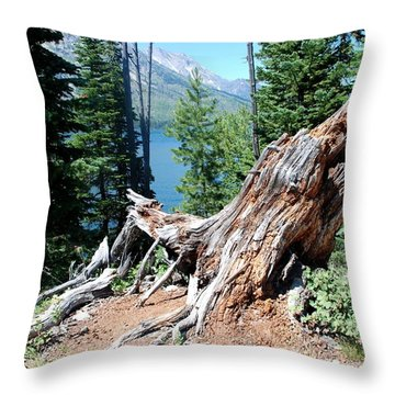 By Jenny Lake Throw Pillow by Dany Lison