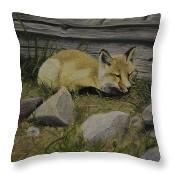 By The Den Throw Pillow
