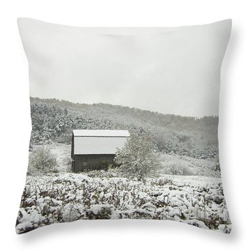 Cabin In The Snow Throw Pillow by Michael Waters