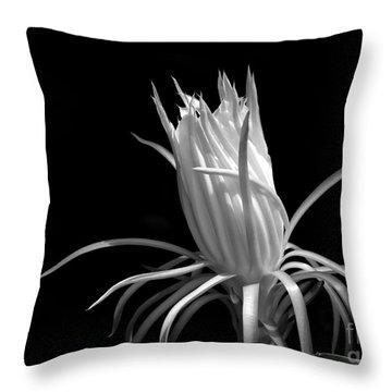 Cactus Flower Throw Pillow by Sabrina L Ryan