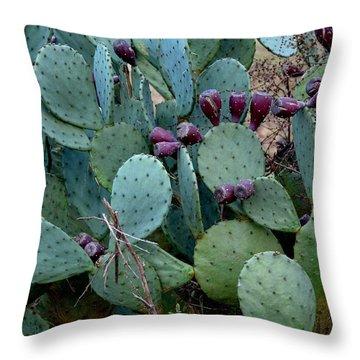 Cactus Plants Throw Pillow by Maria Urso