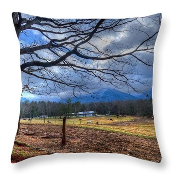 Cades Cove Lane Throw Pillow by Debra and Dave Vanderlaan
