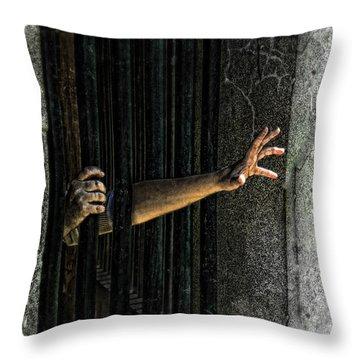 Caged 3 Throw Pillow by Jill Battaglia
