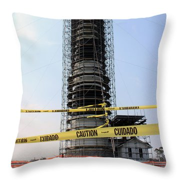 Throw Pillow featuring the photograph Caged Beauty 2 by Tony Cooper