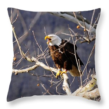 Throw Pillow featuring the photograph Calling For His Mate by Randall Branham