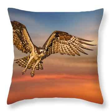 Calling It A Day Throw Pillow by Susan Candelario