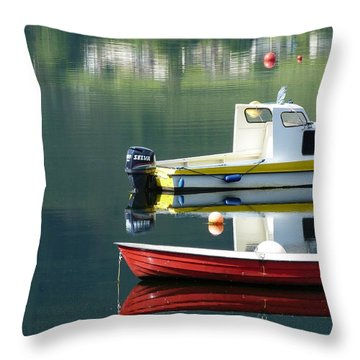 Throw Pillow featuring the photograph Calm Waters by Lynn Bolt