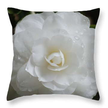 Throw Pillow featuring the photograph Camellia After Rain Storm by Shane Kelly