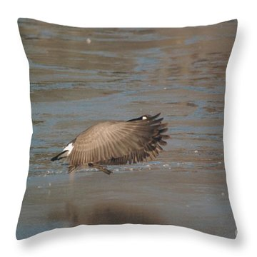 Throw Pillow featuring the photograph Canada Goose In Flight by Mark McReynolds