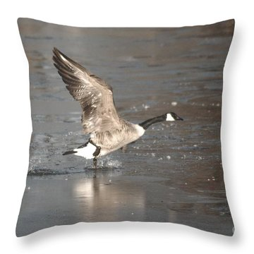 Throw Pillow featuring the photograph Canada Goose Taking Off by Mark McReynolds