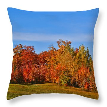 Canada In Colors Throw Pillow by Aimelle