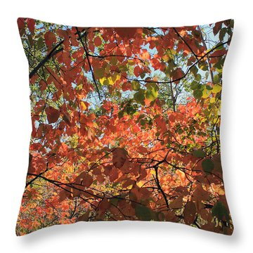 Throw Pillow featuring the photograph Canadian Autumn by Jim Sauchyn