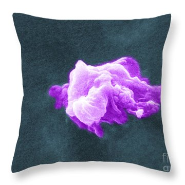 Cancer Cell Death, Sem 6 Of 6 Throw Pillow by Science Source