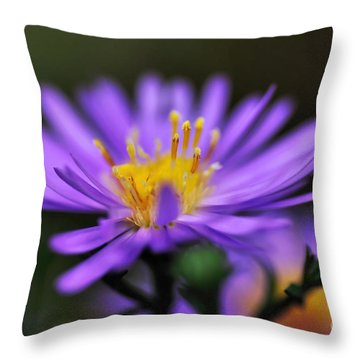 Candles On A Daisy Throw Pillow by Kaye Menner