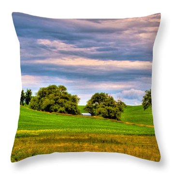 Canola Among The Wheat II Throw Pillow by David Patterson