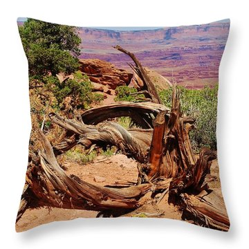 Canyonlands 2 Throw Pillow by Dany Lison
