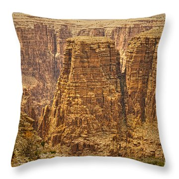 Canyons  Throw Pillow by James BO  Insogna