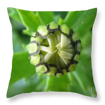 Throw Pillow featuring the photograph Capable by Tina Marie