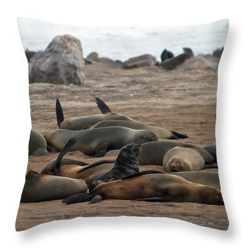 Cape Cross Seal Colony Throw Pillow