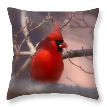 Cardinal - Unafraid Throw Pillow by Travis Truelove