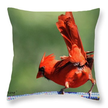 Cardinal-a Picture Is Worth A Thousand Words Throw Pillow