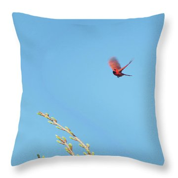 Cardinal In Full Flight Digital Art Throw Pillow by Thomas Woolworth