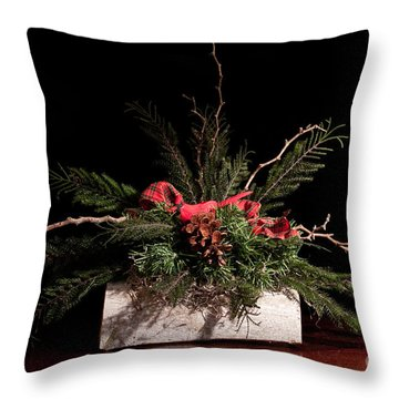 Cardinal In Winter Throw Pillow by Dinah Anaya