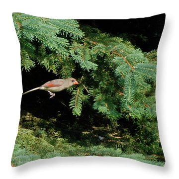 Throw Pillow featuring the photograph Cardinal Just A Hop Away by Thomas Woolworth