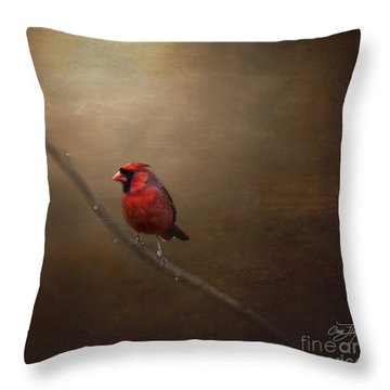 Cardinal Old Master - Artist Cris Hayes Throw Pillow